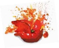 Traduccion-texto-original-ingles-la-tomatina